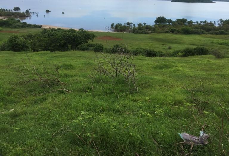 Très beau terrain avec vue sur pain de sucre de Diego à vendre